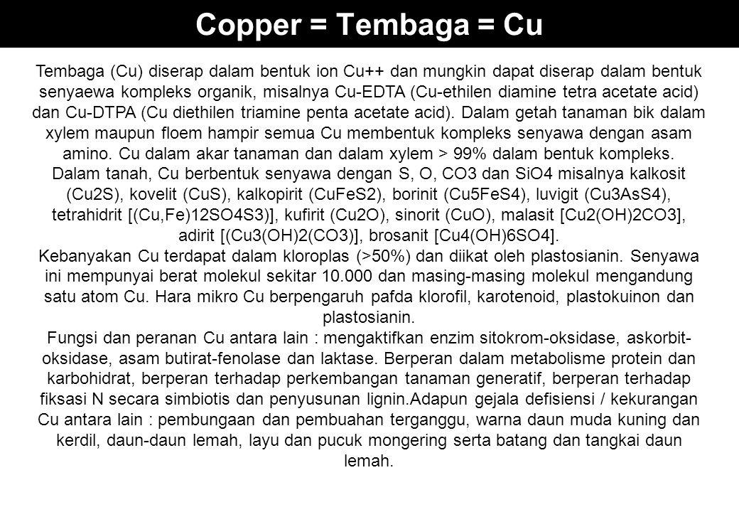 Copper = Tembaga = Cu Tembaga (Cu) diserap dalam bentuk ion Cu++ dan mungkin dapat diserap dalam bentuk senyaewa kompleks organik, misalnya Cu-EDTA (C