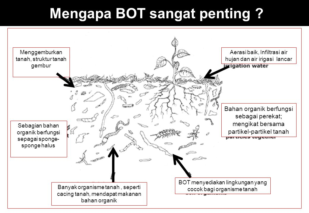 Kriteria tambahan untuk meminimumkan sumber-sumber non-point (pertanian) bagi pencemaan air permukaan dan groundwater must use current NRCS approved nutrient loss and soil erosion risk assessment tools to evaluate potential nutrient and soil losses identified resource concerns must be addressed to meet current planning criteria (eFOTG, Sec III, Quality Criteria) nutrients – low or moderate leaching and runoff risk assessment index scores soil erosion – T Sumber: Jim Sharkoff.