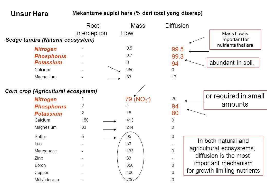 Unsur Hara Mekanisme suplai hara (% dari total yang diserap) Root Interception Mass Flow Diffusion Sedge tundra (Natural ecosystem) Nitrogen -0.5 99.5