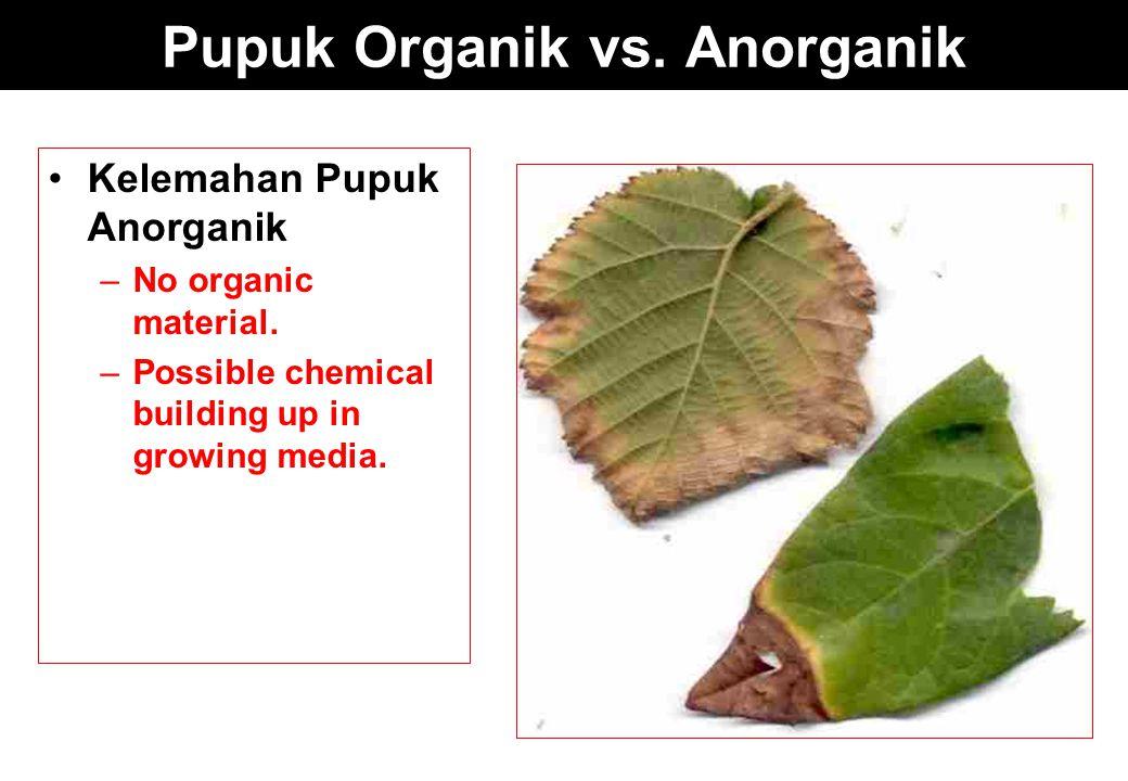 Pupuk Organik vs. Anorganik Kelemahan Pupuk Anorganik –No organic material. –Possible chemical building up in growing media.