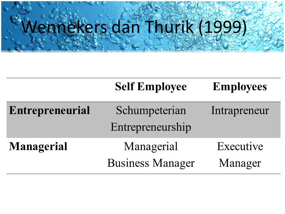 Wennekers dan Thurik (1999) Self EmployeeEmployees Entrepreneurial Schumpeterian Entrepreneurship Intrapreneur ManagerialManagerial Business Manager Executive Manager