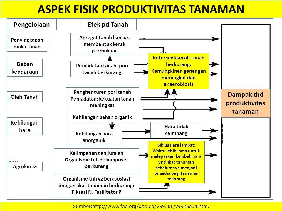 Sumber:http://www.fao.org/docrep/V9926E/v9926e04.htm. ASPEK FISIK PRODUKTIVITAS TANAMAN Dampak thd produktivitas tanaman Efek pd TanahPengelolaan Agro