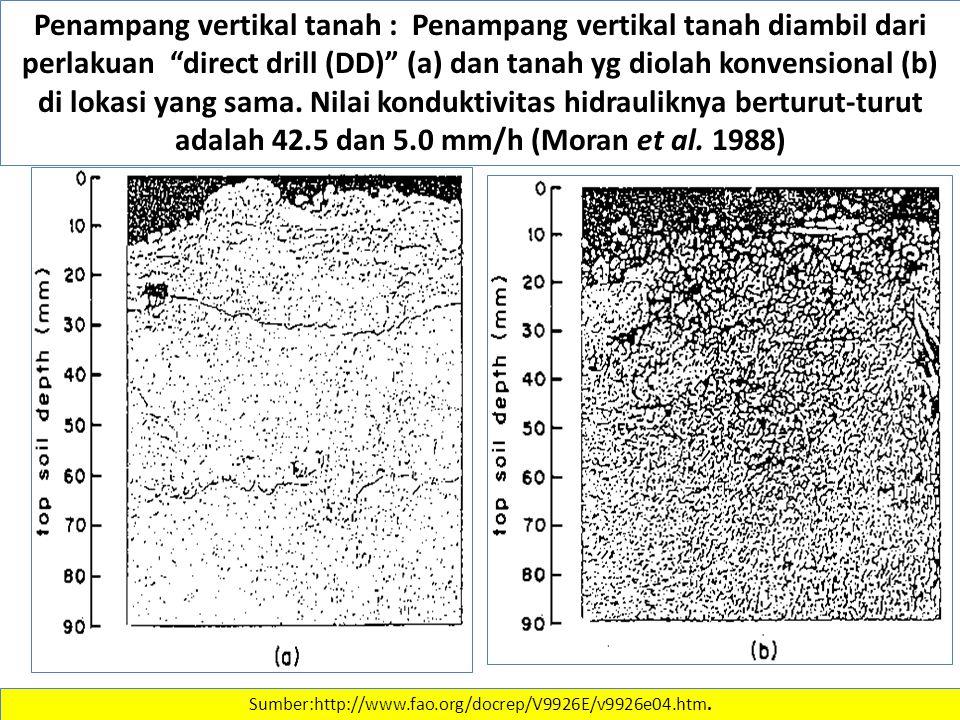 "Penampang vertikal tanah : Penampang vertikal tanah diambil dari perlakuan ""direct drill (DD)"" (a) dan tanah yg diolah konvensional (b) di lokasi yang"