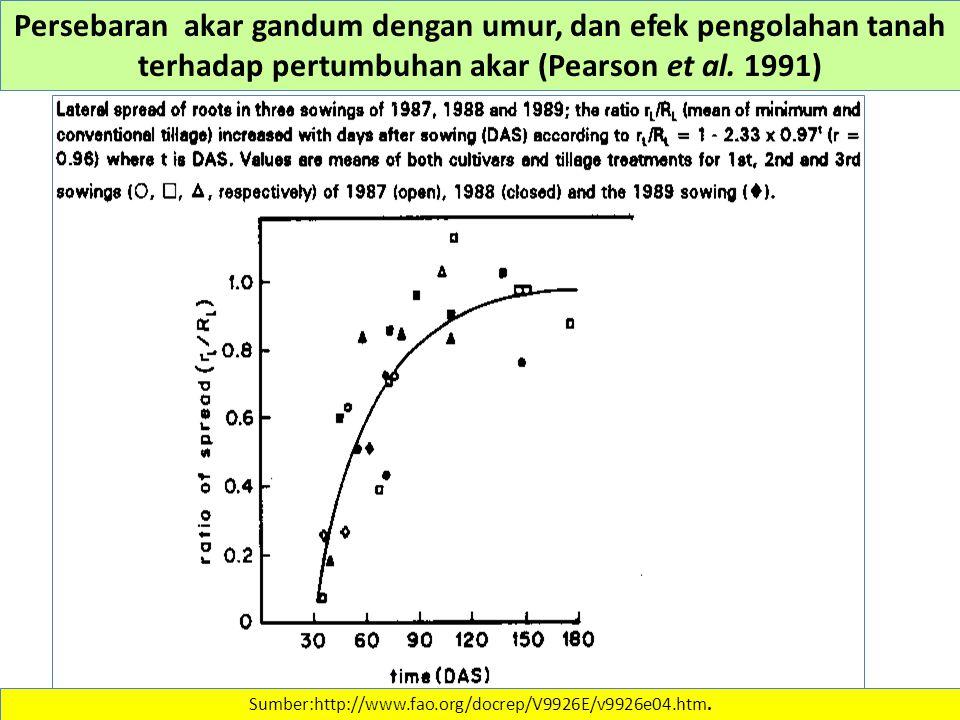 Persebaran akar gandum dengan umur, dan efek pengolahan tanah terhadap pertumbuhan akar (Pearson et al. 1991) Sumber:http://www.fao.org/docrep/V9926E/
