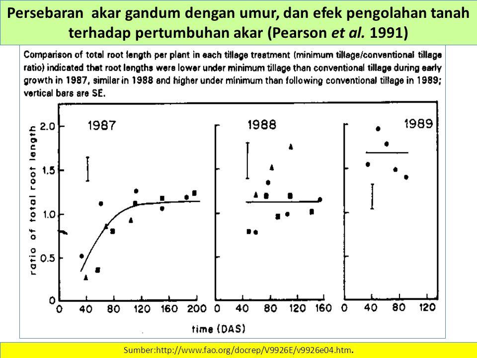 Sumber:http://www.fao.org/docrep/V9926E/v9926e04.htm. Persebaran akar gandum dengan umur, dan efek pengolahan tanah terhadap pertumbuhan akar (Pearson
