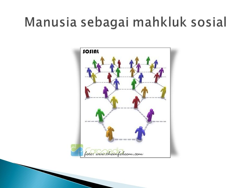  Suatu kelompok sosial cenderung untuk tidak menjadi kelompok yang statis,tapi selalu berkembang memerankan fungsinya yang baru atau bahkan mempersempit lingkupnya.