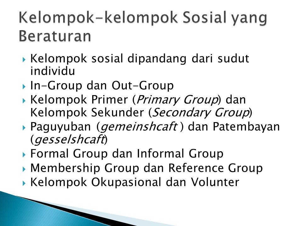  Kelompok sosial dipandang dari sudut individu  In-Group dan Out-Group  Kelompok Primer (Primary Group) dan Kelompok Sekunder (Secondary Group)  P