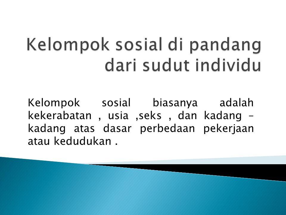 Kelompok sosial biasanya adalah kekerabatan, usia,seks, dan kadang – kadang atas dasar perbedaan pekerjaan atau kedudukan.