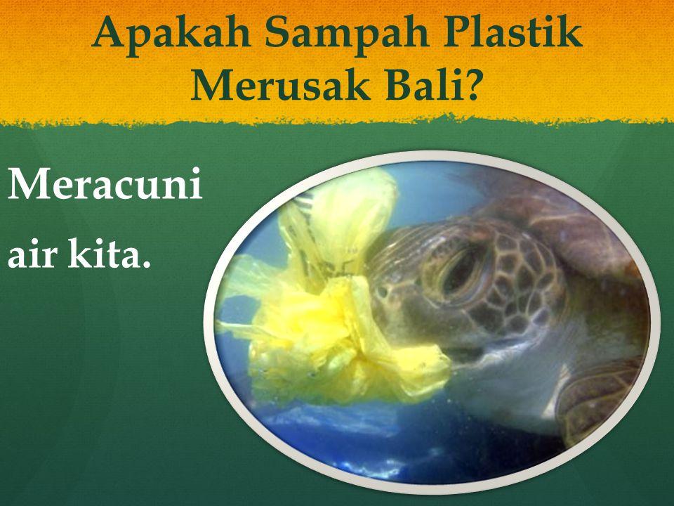 Apakah Sampah Plastik Merusak Bali? Meracuni air kita.