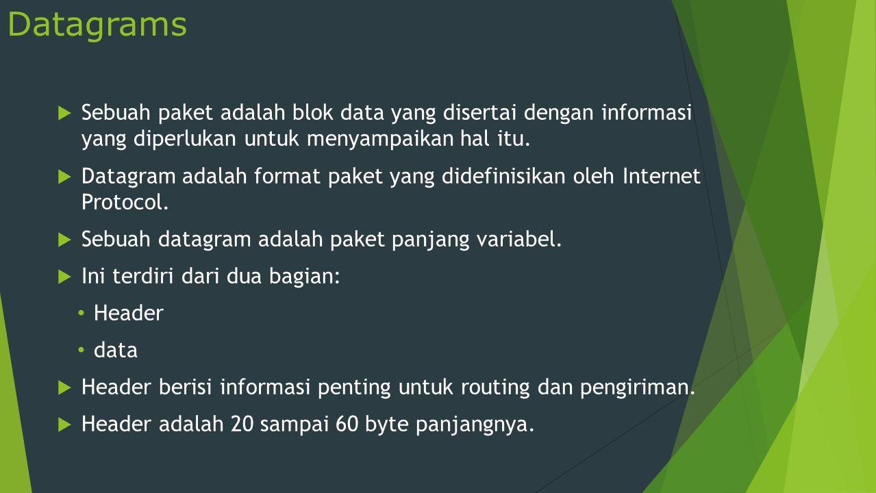 Datagrams (Contd.)  Gambar berikut menunjukkan bidang paket IP: IP datagram