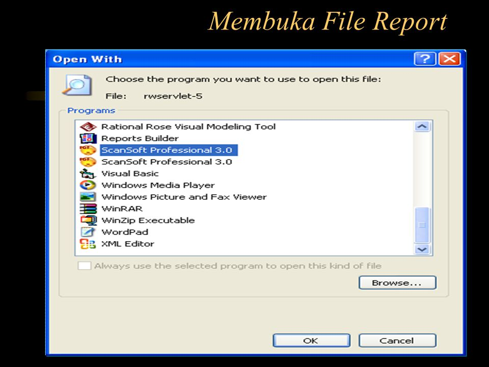 Membuka File Report