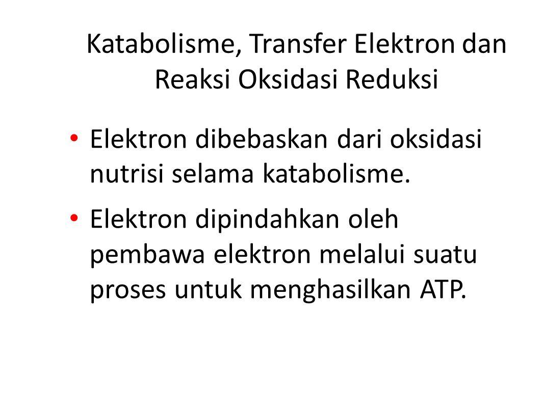 Katabolisme, Transfer Elektron dan Reaksi Oksidasi Reduksi Elektron dibebaskan dari oksidasi nutrisi selama katabolisme.