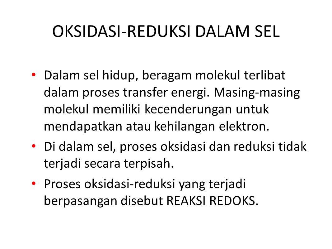 OKSIDASI-REDUKSI DALAM SEL Dalam sel hidup, beragam molekul terlibat dalam proses transfer energi.