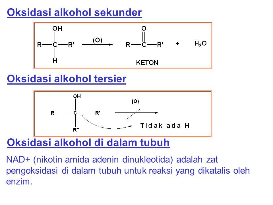 Oksidasi alkohol sekunder Oksidasi alkohol tersier Oksidasi alkohol di dalam tubuh NAD+ (nikotin amida adenin dinukleotida) adalah zat pengoksidasi di
