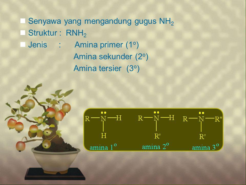 Senyawa yang mengandung gugus NH 2 Struktur : RNH 2 Jenis : Amina primer (1 o ) Amina sekunder (2 o ) Amina tersier (3 o )