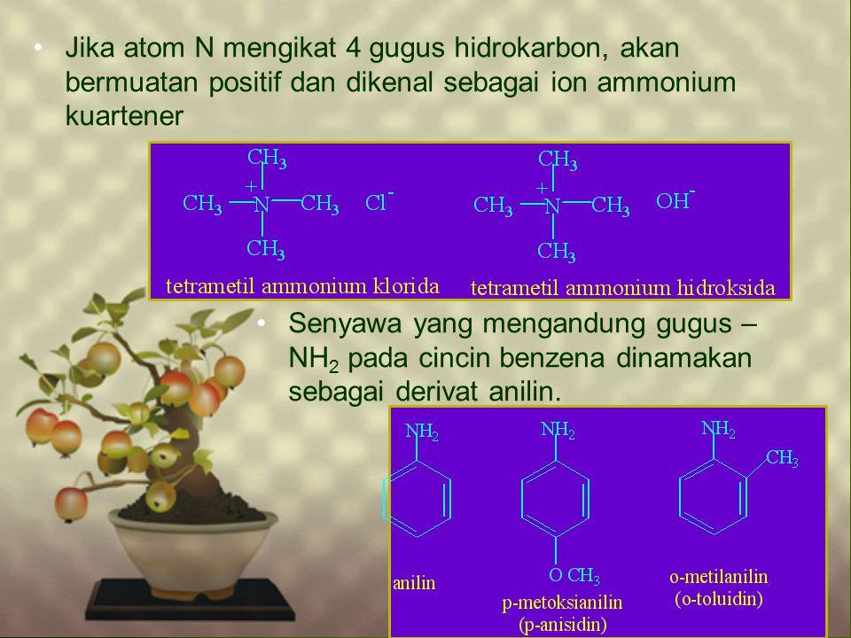 Jika atom N mengikat 4 gugus hidrokarbon, akan bermuatan positif dan dikenal sebagai ion ammonium kuartener Senyawa yang mengandung gugus – NH 2 pada