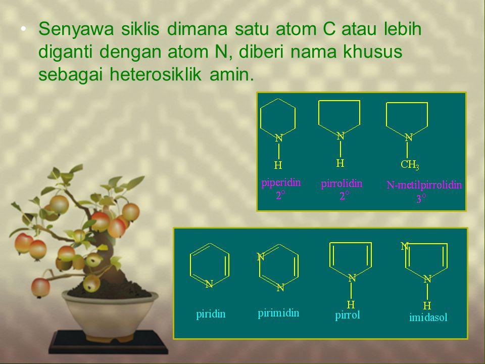 Senyawa siklis dimana satu atom C atau lebih diganti dengan atom N, diberi nama khusus sebagai heterosiklik amin.