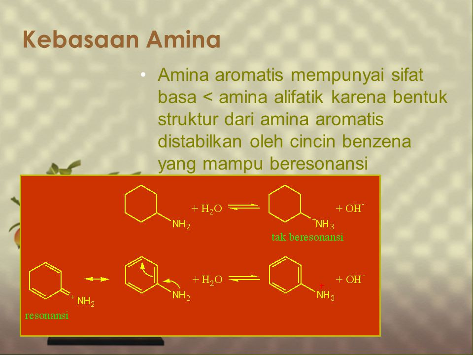 Kebasaan Amina Amina aromatis mempunyai sifat basa < amina alifatik karena bentuk struktur dari amina aromatis distabilkan oleh cincin benzena yang ma
