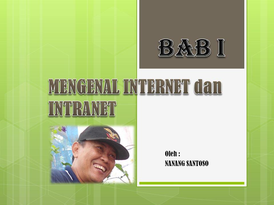 1.Pengertian Internet dan Intranet 1.1.