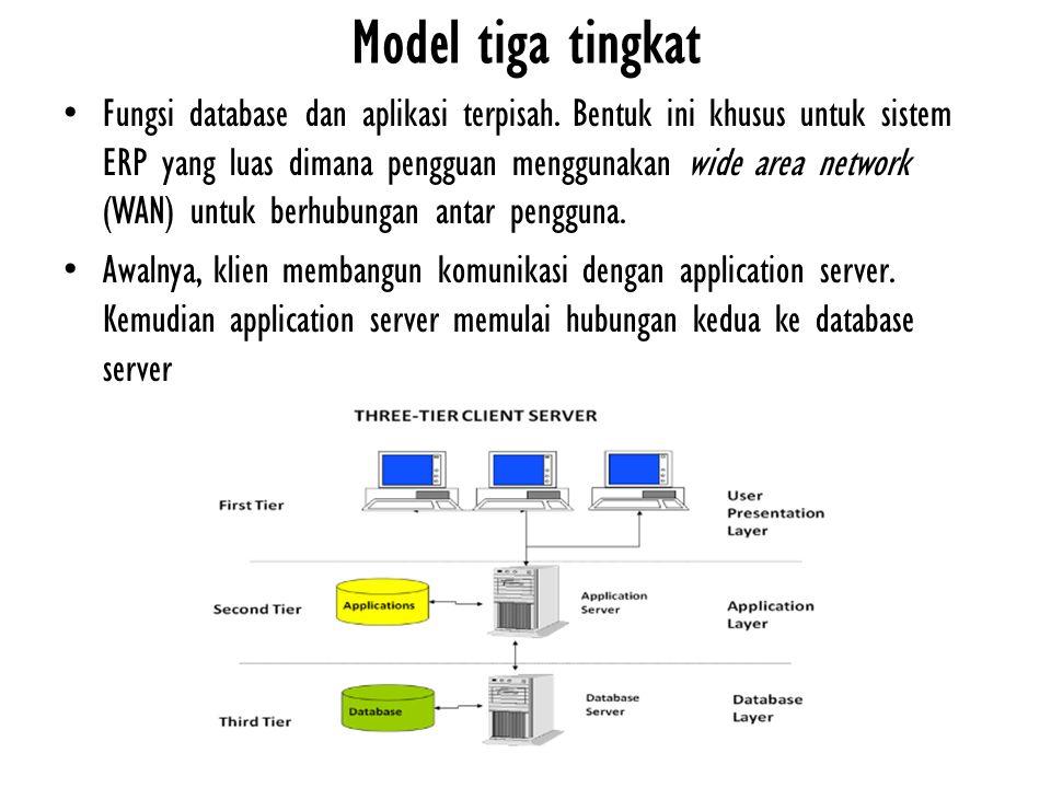 Fungsi database dan aplikasi terpisah. Bentuk ini khusus untuk sistem ERP yang luas dimana pengguan menggunakan wide area network (WAN) untuk berhubun