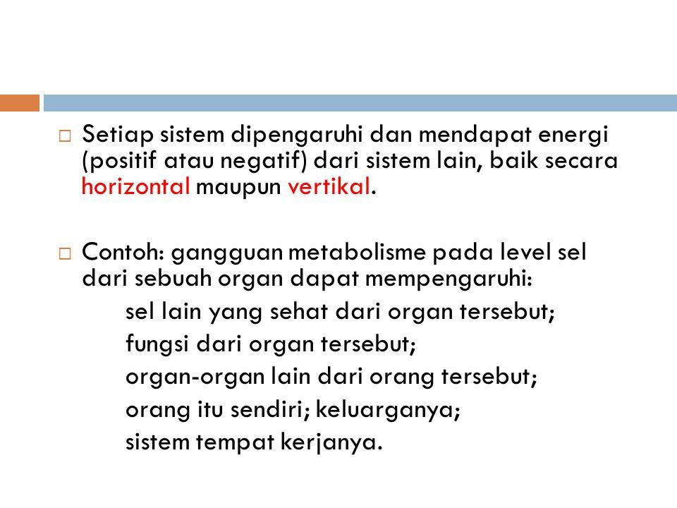  Setiap sistem dipengaruhi dan mendapat energi (positif atau negatif) dari sistem lain, baik secara horizontal maupun vertikal.  Contoh: gangguan me