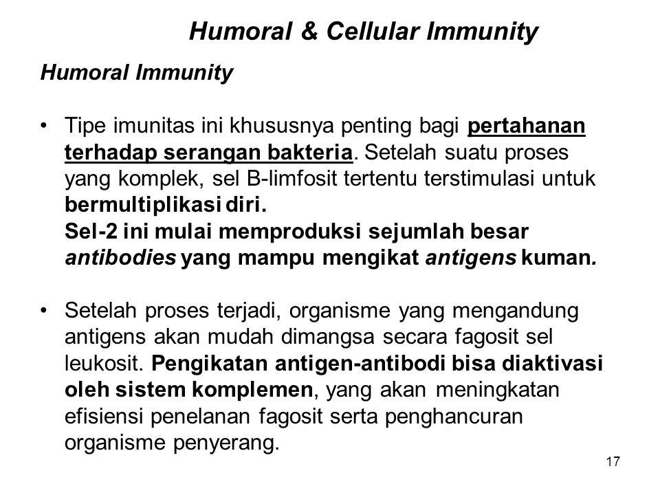 17 Humoral & Cellular Immunity Humoral Immunity Tipe imunitas ini khususnya penting bagi pertahanan terhadap serangan bakteria. Setelah suatu proses y