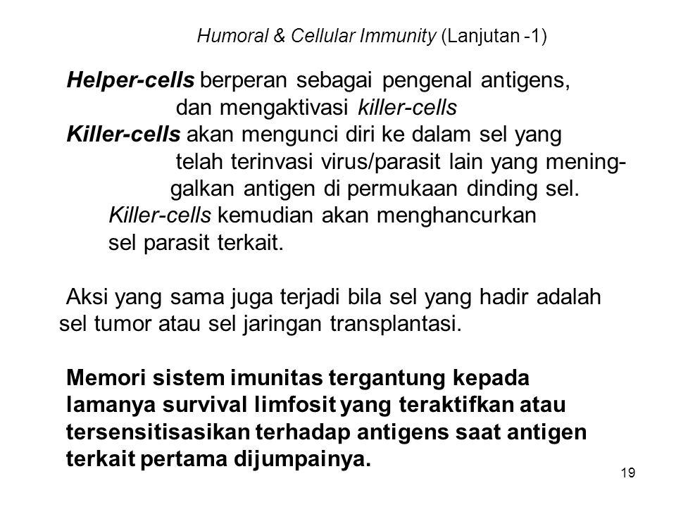 19 Humoral & Cellular Immunity (Lanjutan -1) Helper-cells berperan sebagai pengenal antigens, dan mengaktivasi killer-cells Killer-cells akan mengunci