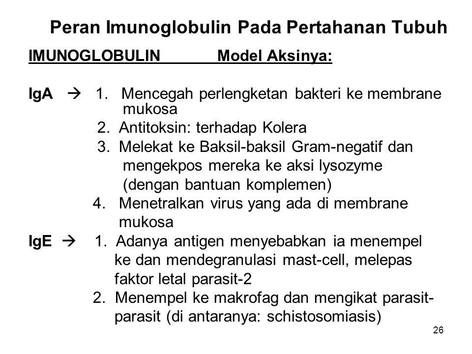 26 Peran Imunoglobulin Pada Pertahanan Tubuh IMUNOGLOBULINModel Aksinya: IgA  1. Mencegah perlengketan bakteri ke membrane mukosa 2. Antitoksin: terh