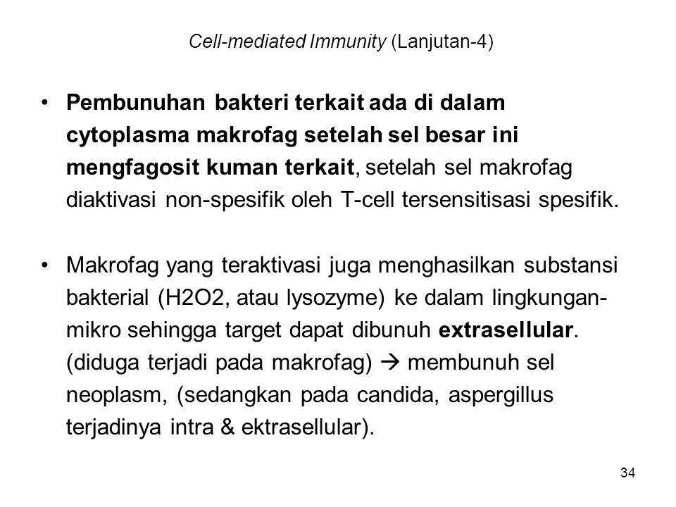34 Cell-mediated Immunity (Lanjutan-4) Pembunuhan bakteri terkait ada di dalam cytoplasma makrofag setelah sel besar ini mengfagosit kuman terkait, se