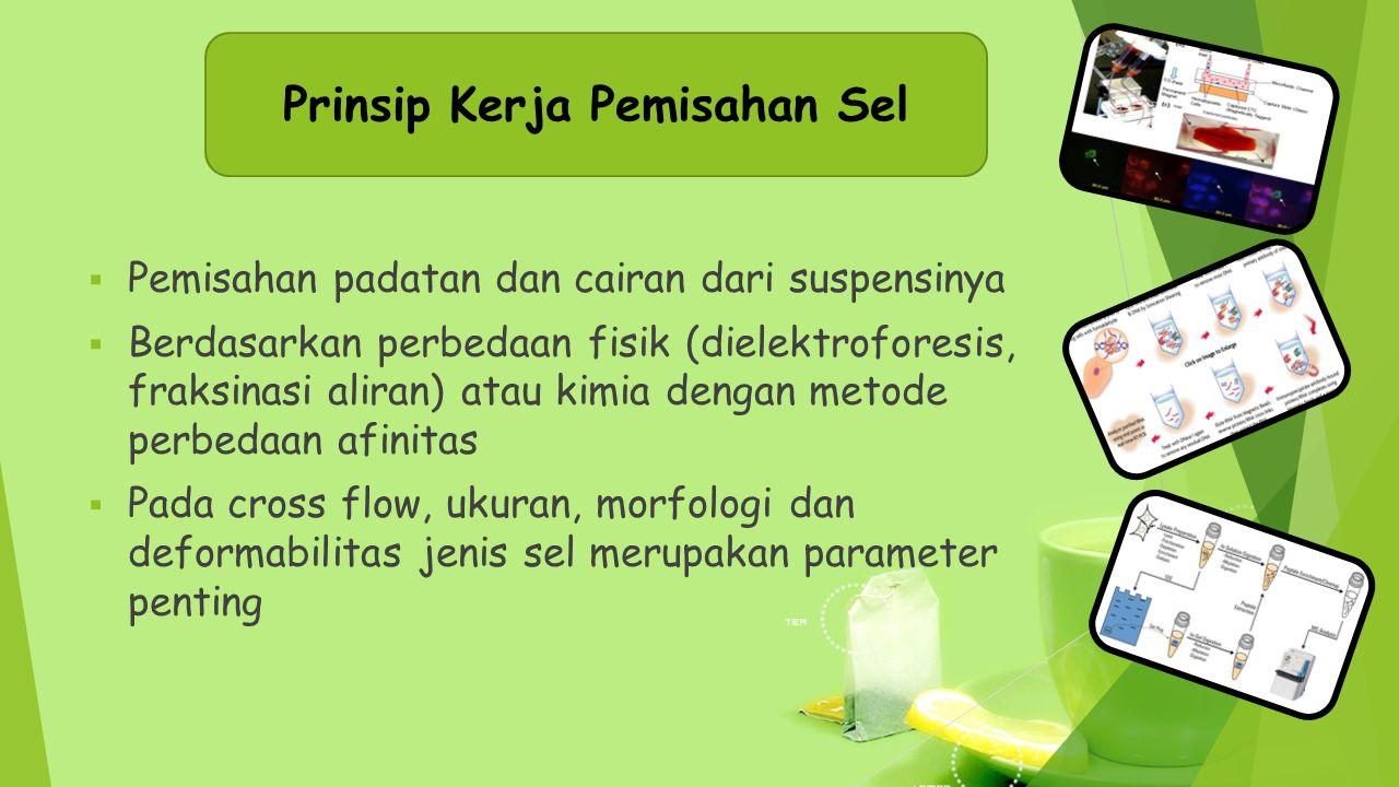Prinsip Kerja Pemisahan Sel  Pemisahan padatan dan cairan dari suspensinya  Berdasarkan perbedaan fisik (dielektroforesis, fraksinasi aliran) atau k