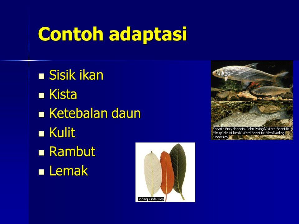 Contoh adaptasi Sisik ikan Sisik ikan Kista Kista Ketebalan daun Ketebalan daun Kulit Kulit Rambut Rambut Lemak Lemak