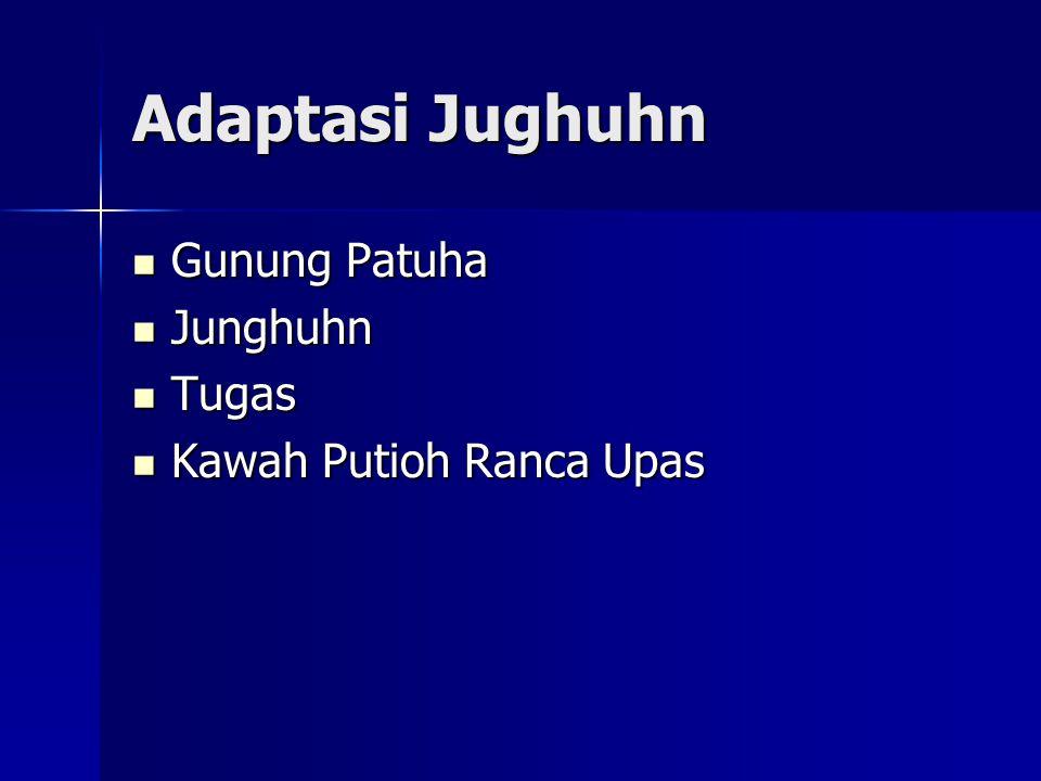 Adaptasi Jughuhn Gunung Patuha Gunung Patuha Junghuhn Junghuhn Tugas Tugas Kawah Putioh Ranca Upas Kawah Putioh Ranca Upas
