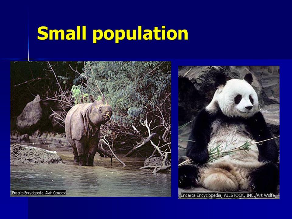 Small population