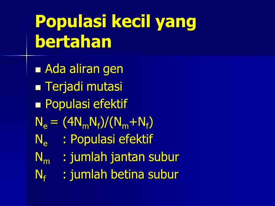 Populasi kecil yang bertahan Ada aliran gen Ada aliran gen Terjadi mutasi Terjadi mutasi Populasi efektif Populasi efektif N e = (4N m N f )/(N m +N f