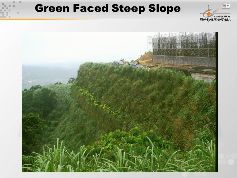 Green Faced Steep Slope