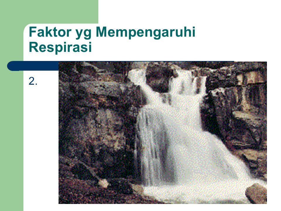 Oksigen Diberikan ketika hipoksemia timbul atau dicurigai akan timbul dimana dengan hipoksemia tertanggulangi maka hipoxia akan dapat dicegah.