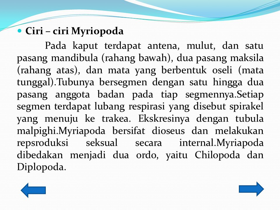  Myriapoda Myriapoda (dalam bahasa yunani, myria = banyak, podos = kaki) merupakan hewan berkaki banyak.Myriapoda hidup di darat pada tempat lembap,