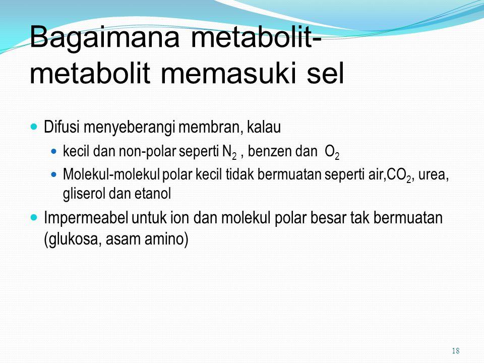 Bagaimana metabolit- metabolit memasuki sel Difusi menyeberangi membran, kalau kecil dan non-polar seperti N 2, benzen dan O 2 Molekul-molekul polar k