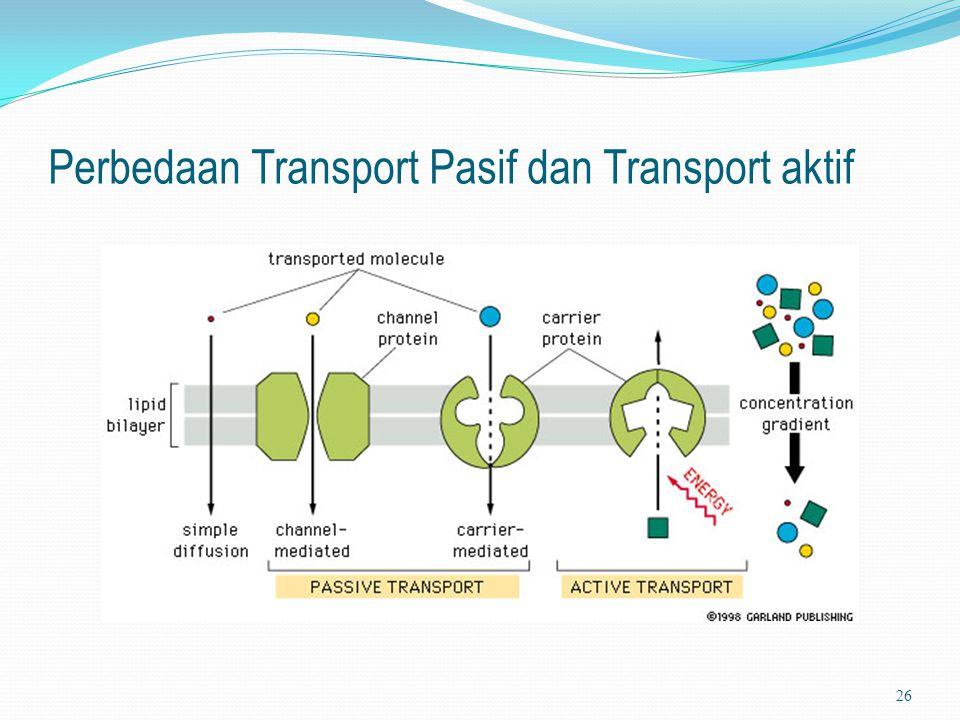 Perbedaan Transport Pasif dan Transport aktif 26