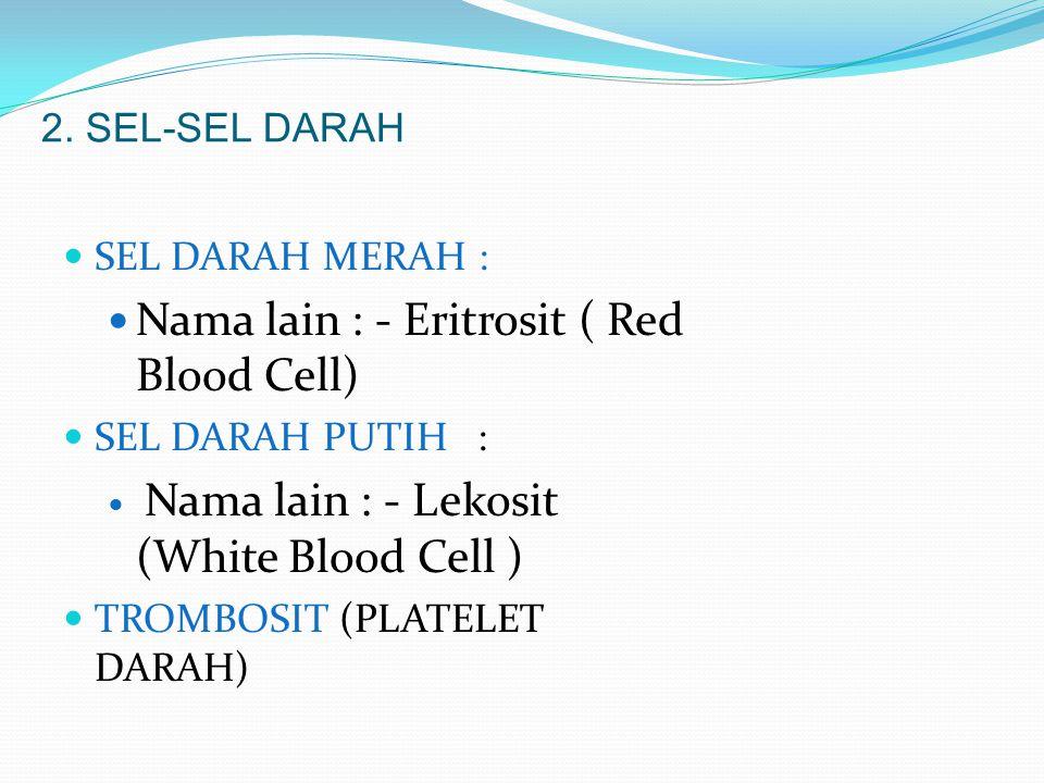 2. SEL-SEL DARAH SEL DARAH MERAH : Nama lain : - Eritrosit ( Red Blood Cell) SEL DARAH PUTIH : Nama lain : - Lekosit (White Blood Cell ) TROMBOSIT (PL