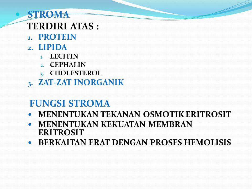 STROMA TERDIRI ATAS : 1. PROTEIN 2. LIPIDA 1. LECITIN 2. CEPHALIN 3. CHOLESTEROL 3. ZAT-ZAT INORGANIK FUNGSI STROMA MENENTUKAN TEKANAN OSMOTIK ERITROS