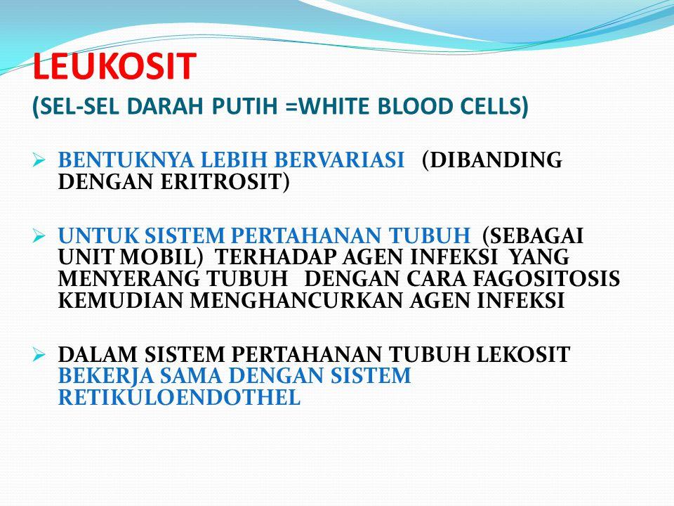 LEUKOSIT (SEL-SEL DARAH PUTIH =WHITE BLOOD CELLS)  BENTUKNYA LEBIH BERVARIASI (DIBANDING DENGAN ERITROSIT)  UNTUK SISTEM PERTAHANAN TUBUH (SEBAGAI U