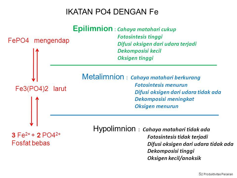 Epilimnion : Cahaya matahari cukup Fotosintesis tinggi Difusi oksigen dari udara terjadi Dekomposisi kecil Oksigen tinggi Metalimnion : Cahaya matahari berkurang Fotosintesis menurun Difusi oksigen dari udara tidak ada Dekomposisi meningkat Oksigen menurun Hypolimnion : Cahaya matahari tidak ada Fotosintesis tidak terjadi Difusi oksigen dari udara tidak ada Dekomposisi tinggi Oksigen kecil/anoksik FePO4 mengendap Fe3(PO4)2 larut 3 Fe 2+ + 2 PO4 2+ Fosfat bebas IKATAN PO4 DENGAN Fe S 2 Produktivitas Perairan