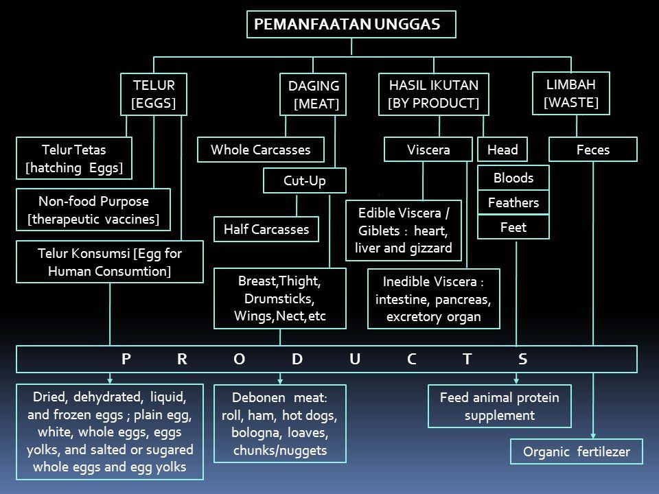 Konsumsi Daging, Telur, dan Susu di Jawa Barat per kapita per tahun (kg) NoJenis Produk Tahun 2003 *) 20052006 1Daging7,045,215,47 2Telur2,802,792,88 3Susu7,318,408,89 Protein/kapita/hari (g)5,124,624,82 Standar Konsumsi (Norma Gizi) :  Protein Hewan : …… gram/kapita/hari  Daging, Telur dan Susu : …… kg/kapita/tahun *) Disnak Jabar 2003