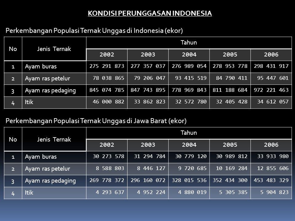 KONDISI PERUNGGASAN INDONESIA NoJenis Ternak Tahun 20022003200420052006 1Ayam buras 275 291 873277 357 037276 989 054278 953 778298 431 917 2Ayam ras