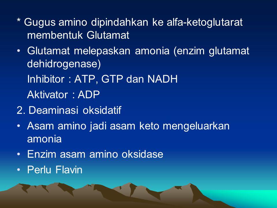 Organ yang penting dalam mempertahankan kadar asam amino : 1.