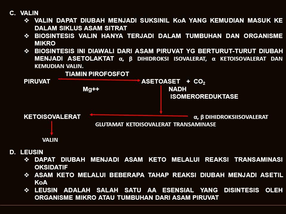 TIAMINPIROFOSFAT PIRUVATASETOLAKTA + CO 2 Mg++ NADH 2 REDUKTASE KETOISOVALERATDIHIDROKSIISOVALERAT ASETIL KoA ISOPROPILMALATKETOISOKAPROAT KETOISOKAPROAT GLUTAMAT TRANSAMINASE LEUSIN