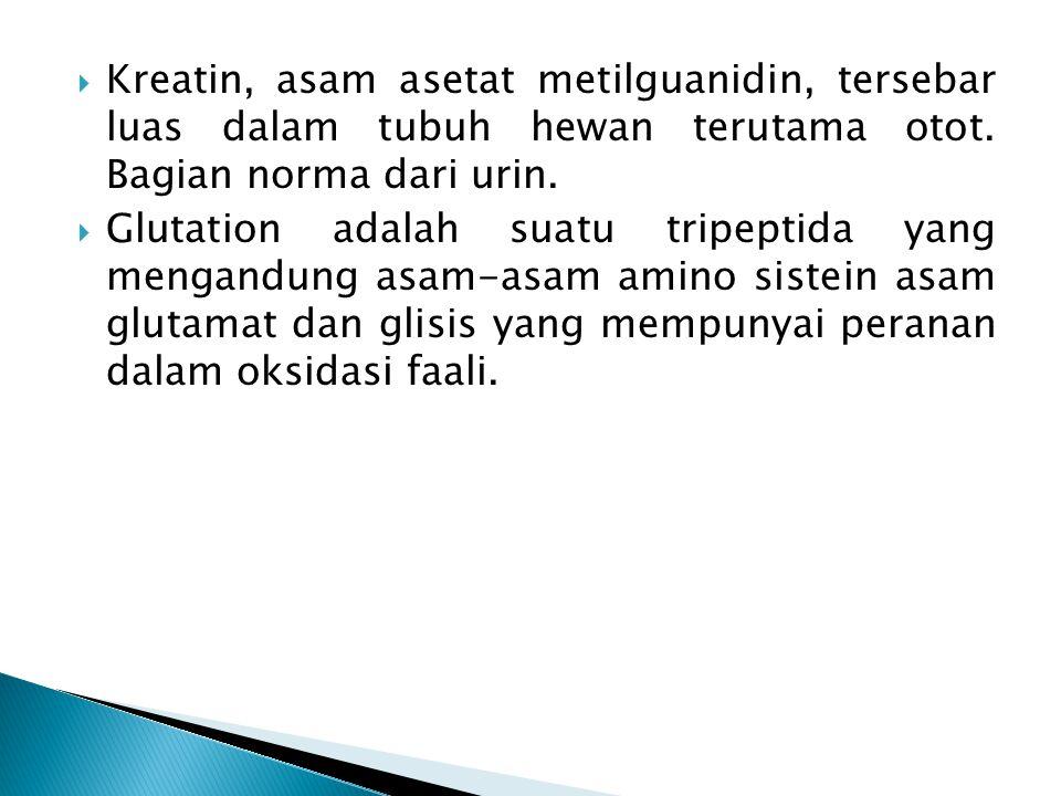  Kreatin, asam asetat metilguanidin, tersebar luas dalam tubuh hewan terutama otot. Bagian norma dari urin.  Glutation adalah suatu tripeptida yang