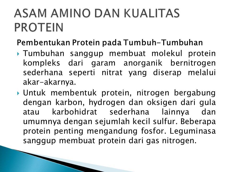 Pembentukan Protein pada Tumbuh-Tumbuhan  Tumbuhan sanggup membuat molekul protein kompleks dari garam anorganik bernitrogen sederhana seperti nitrat