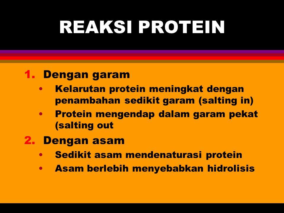 REAKSI PROTEIN 1.Dengan garam Kelarutan protein meningkat dengan penambahan sedikit garam (salting in) Protein mengendap dalam garam pekat (salting ou